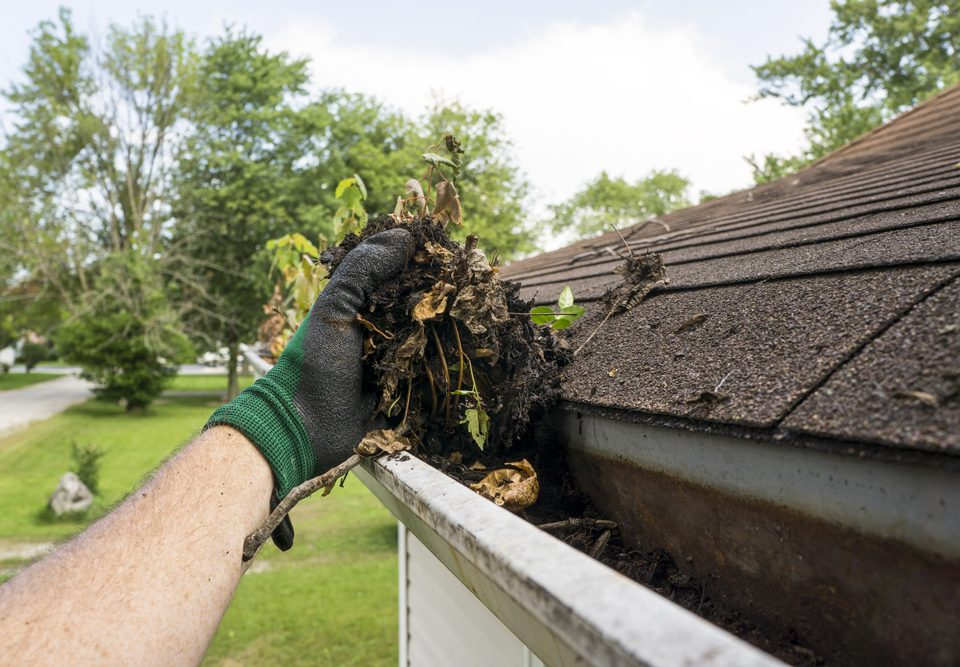gutter cleaning and roof repair for property maintenance